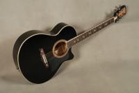 Guitar Acoustic Crusader CF-6000 CFM