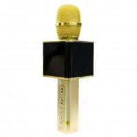 Micro Magic Karaoke YS-10