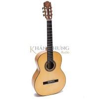 Guitar Classic C550C