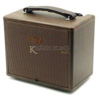 Ampli Guitar Acoustic AGA SC-20